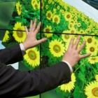 Thumbnail-Photo: MultiTouch at ISE