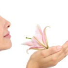 Thumbnail-Photo: Ambient scents help calm shoppers