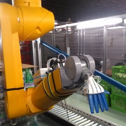 Thumbnail-Photo: Ocado evaluated robotic picking and packing of shopping orders...