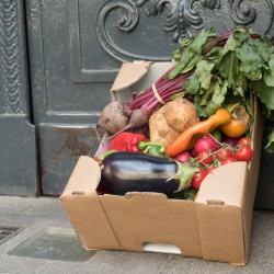 Thumbnail: Photo: Preventing food waste: It's ecological, social and saves resources...