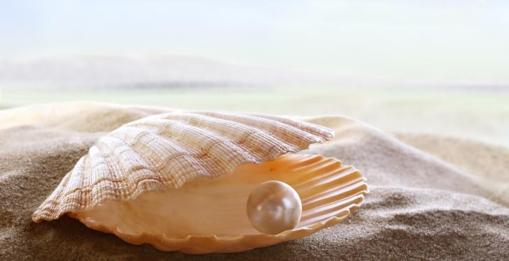 A pearl in a shell on the beach; Copyright: panthermedia.net/silvae...