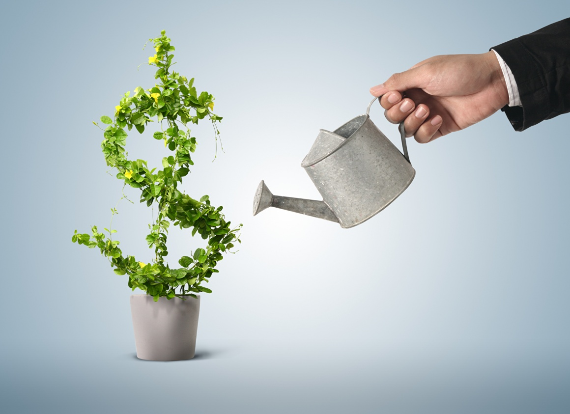 Hand of a business man in a suit watering a plant in the form of a dollar sign;...